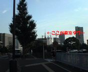 国会議事堂前から見た東京タワー