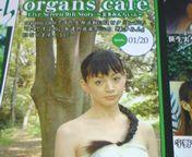 organs cafe