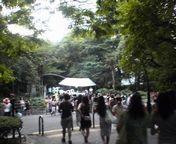 ケアリイ・レイシェル Kukahi 2006 JAPAN TOUR